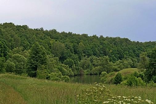Памятник природы «Широколиственный лес в излучине р. Осетр»